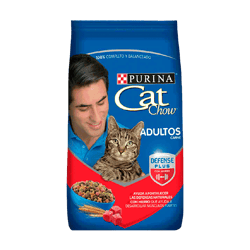 CAT CHOW® Adulto activo carne 500g